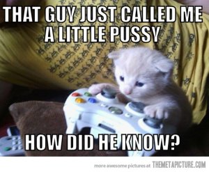 funny-kitten-playing-video-games-xbox