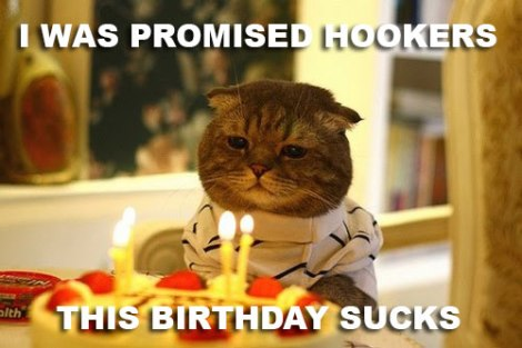 birthday-cat02