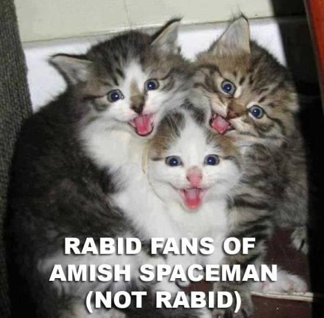 rabidfancats