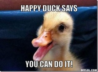 mereduck-meme-generator-happy-duck-says-you-can-do-it-b278a1-405x300