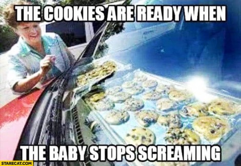 the-cookies-are-ready-when-the-baby-stops-screaming-baking-in-a-car-hot-sunny-day